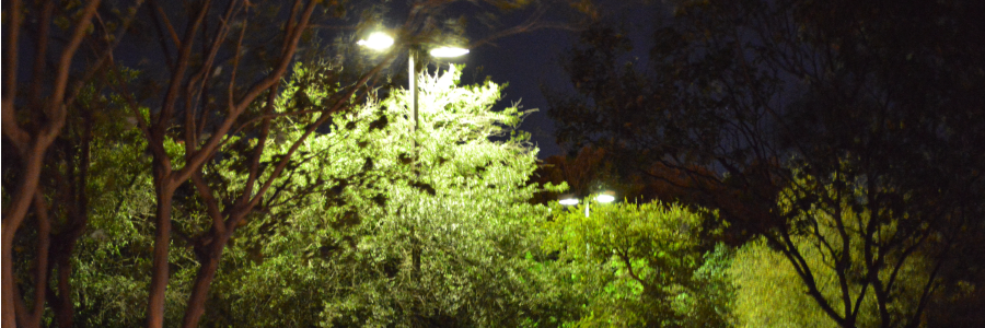 Commercial Electrical Outdoor Security Lighting